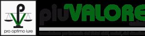 PiuValore Onlus