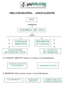 Organigramma Piu Valore Onlus